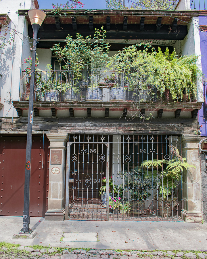 A building façade adorned with ferns and palms in the Chimalistac area of Mexico City