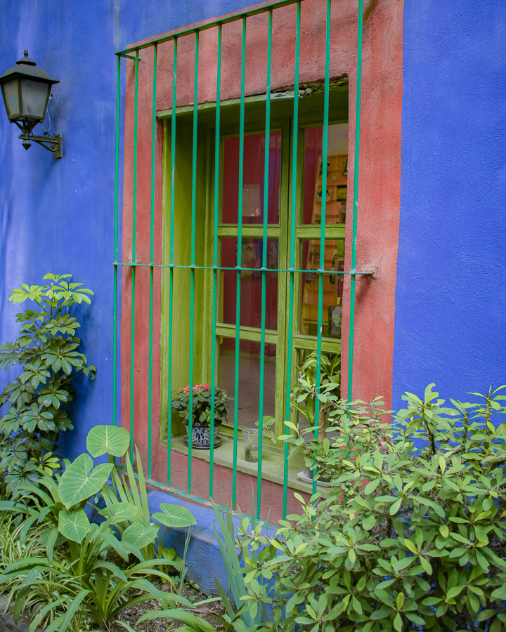 Ferns and palms surround the bright green and red hue'd windows on the ground in Mexico City, Mexico.