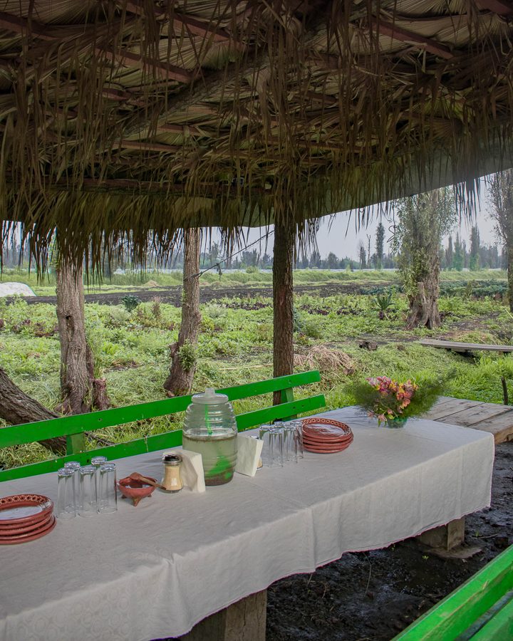 A pretty table setting at the Yolcan farm in the chinampas in Xochimilco, Mexico City.